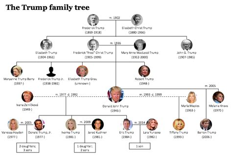 donald trump family tree trump family tree
