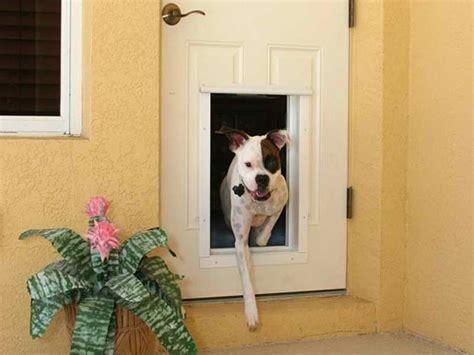 How To Install A Doggie Door by Door Installation How To Install Door