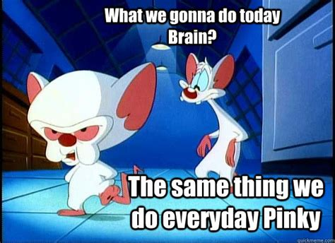 Pinky And The Brain Meme - what we gonna do today brain the same thing we do