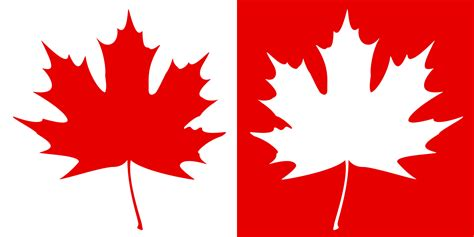 Canada Maple Leaf Outline by Pin Canada Maple Leaf Outline On
