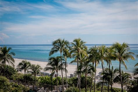 soho beach house hotel review soho beach house miami bikinis passports
