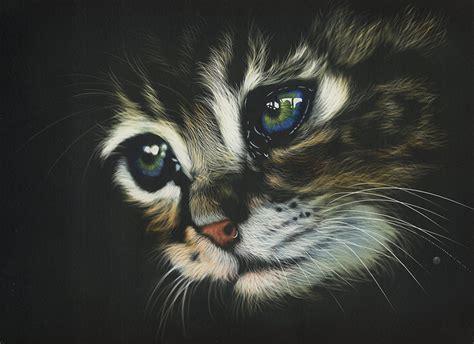 Show Me Your Cat Eye 5 by Bilder Katze Augen Schnurrhaare Vibrisse Schnauze