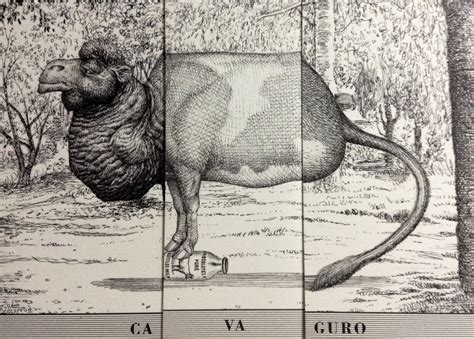 libro animalario animalario universal del profesor revillod neotraba com