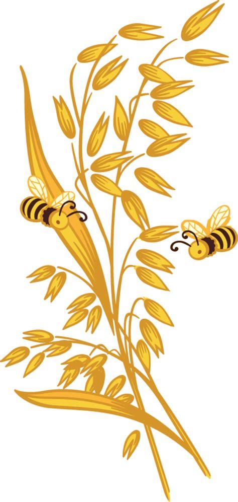 oats honey country harvest