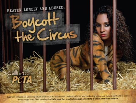 Strips For Peta by Tlc S Chilli Strips To Stripes For Peta S New Anti Circus