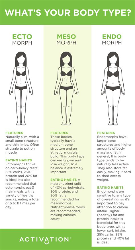healthy fats for endomorph what s your type activation products