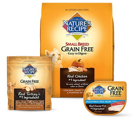 natures recipe food nature s recipe grain free salmon sweet potato pumpkin recipe food 4 lb