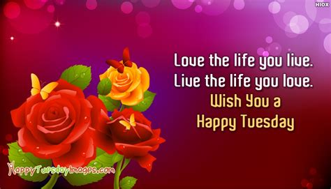 happy tuesday sms wish you a happy tuesday