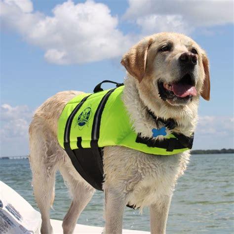 dog boat life jackets dog life jacket deals on 1001 blocks