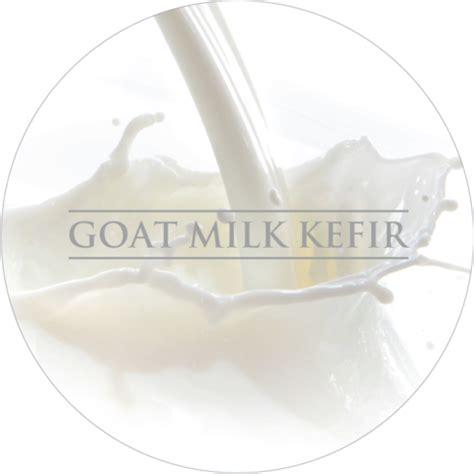Masker Organik Kefir 888 benefits of kefir in skin care nayelle probiotic skincare