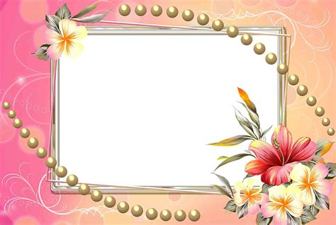 frame design software free download flowers frame png lovely frame