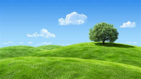 ecogreen daywallpaper