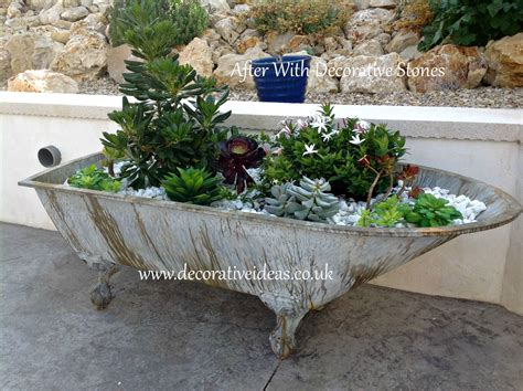 how to make a container garden in a bath flowers