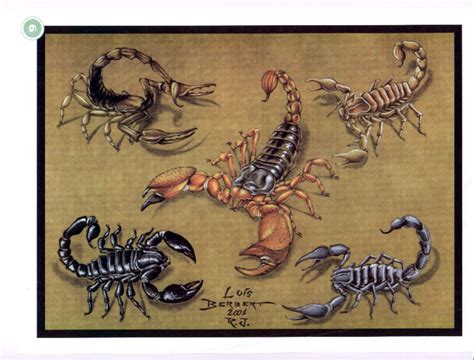 scorpion tattoo designs free scorpion tattoos