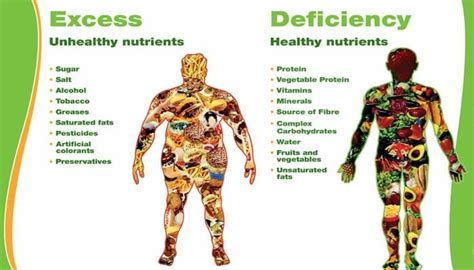 carbohydrates a nutrient excess unhealthy nutrients vs deficiency healthy