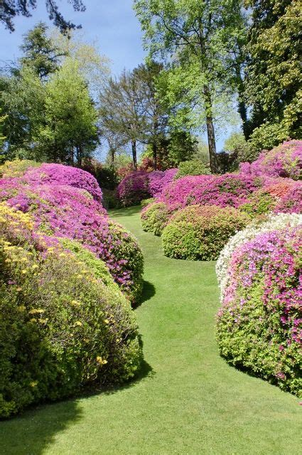 giardini botanici lombardia giardini