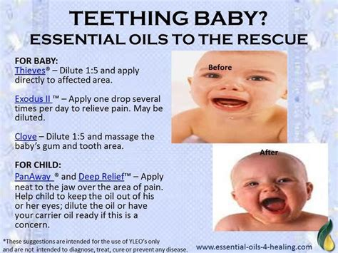 the essential baby book support and resources to help you cope with colic and calm your fussy baby books 17 best ideas about essential oils teething on