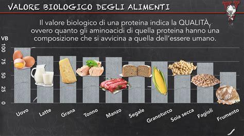 proteine e aminoacidi fanno le proteine animali fanno project invictus