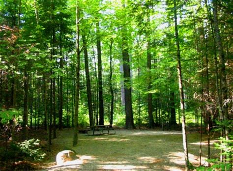 nh rv parks and cgrounds north woods white mountains white mountain national forest cton cground cton