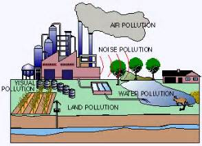 Environmental Outline School by Environmental Pollution Essay Outline