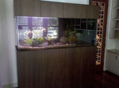 modern aquarium 1000 images about modern aquariums on pinterest