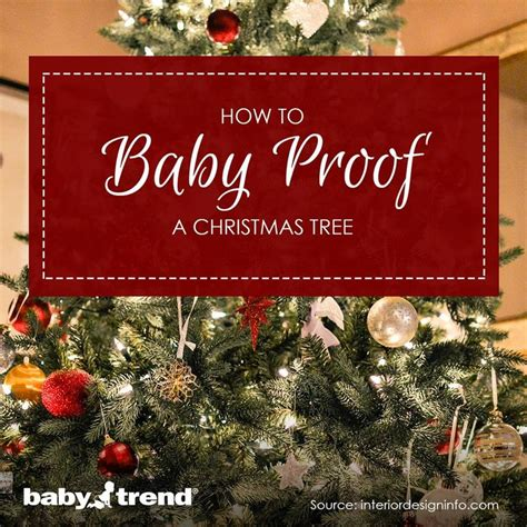 how to baby proof a christmas tree trees babies and