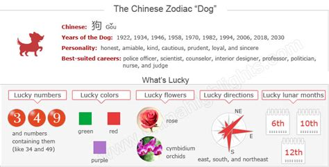 year of the dog zodiac luck romance personality