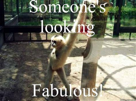 I Am Fabulous Meme - fabulous memes quickmeme