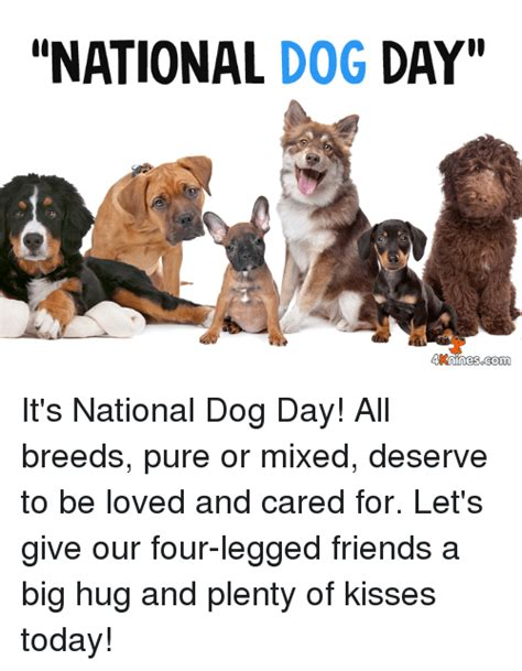 national puppy day meme 25 best memes about national day national day memes