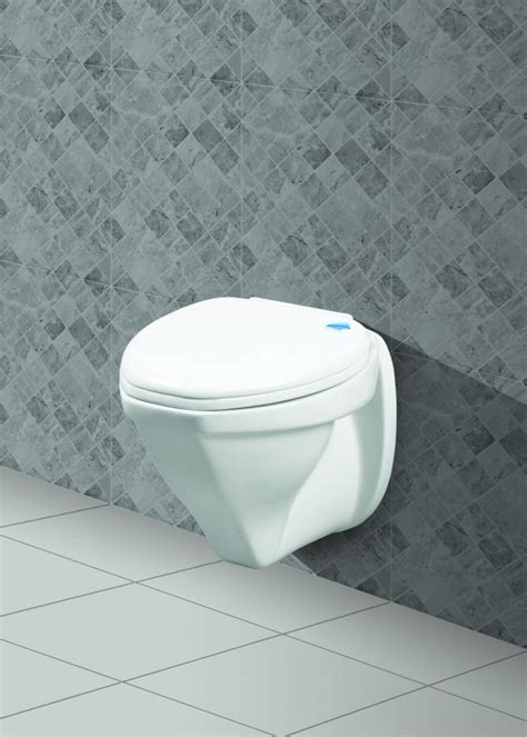 belmonte wall hung water closet cansil ivory in