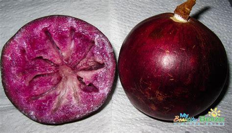 Aple Syar I the caimito or apple my beautiful belize