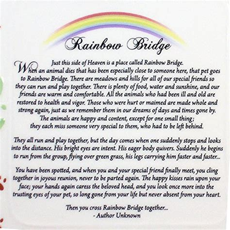 rainbow bridge poem pet bereavement photo frame rainbow bridge poem desertcart