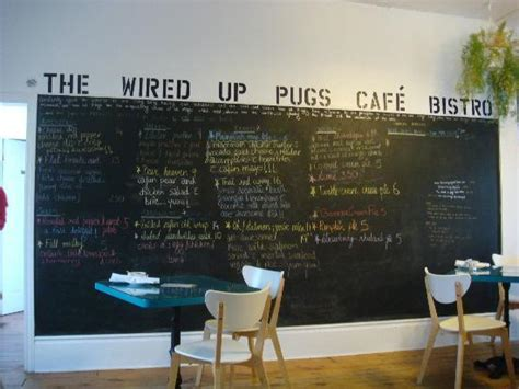 panini pugs the wired up pugs cafe bistro cambridge restaurant reviews phone number photos
