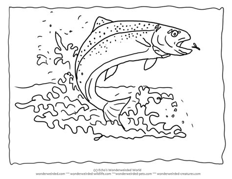 Rainbow Fish Outline Page by Rainbow Fish Outline Az Coloring Pages