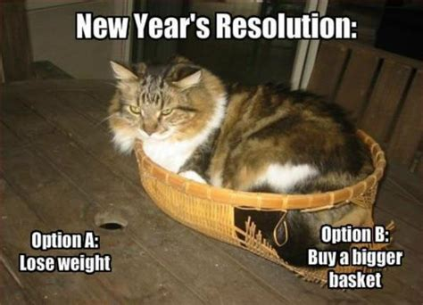New Years Resolution Meme - twenty fift meme stepfeed the homepage of the middle east
