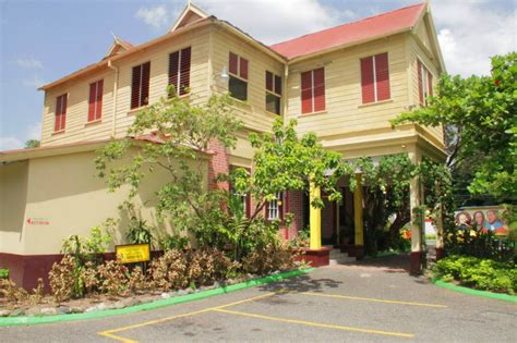 bob s house for dogs bob marley museum still popular attraction in jamaica