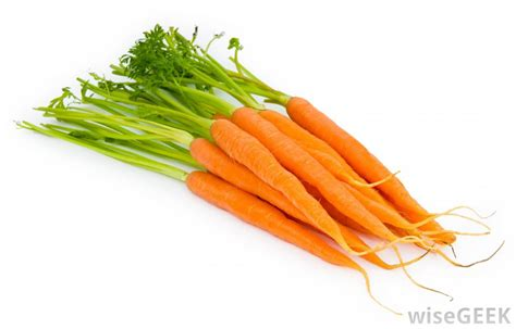 pictures of carrots what is a carrot with pictures