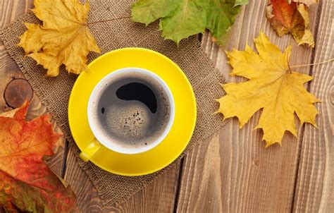 coffee autumn wallpaper wallpaper cup cup maple leaves coffee fall autumn