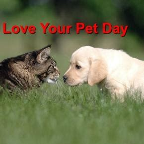 pet lovers celebrate national love  pet day