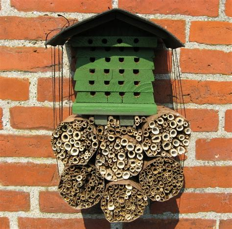 carpenter bee house 17 best images about carpender bee traps on