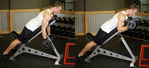 bicep curl with bench press dumbbell prone incline curl valley fitness nutrition
