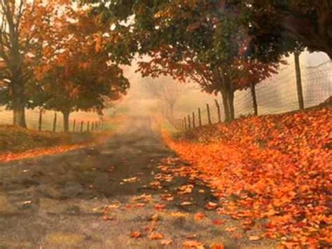 le foglie morte testo les feuilles mortes le foglie morte florence astaire