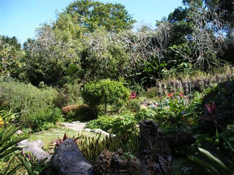 Andromeda Botanical Gardens Panoramio Photo Of Andromeda Botanic Gardens Barbados