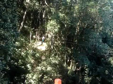 swinging in south africa tree top swinging south africa youtube