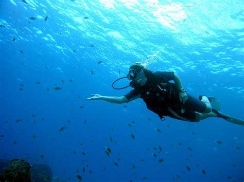 le plongee alavama centre de plong 233 e responsable 224 sainte basse terre de la guadeloupe
