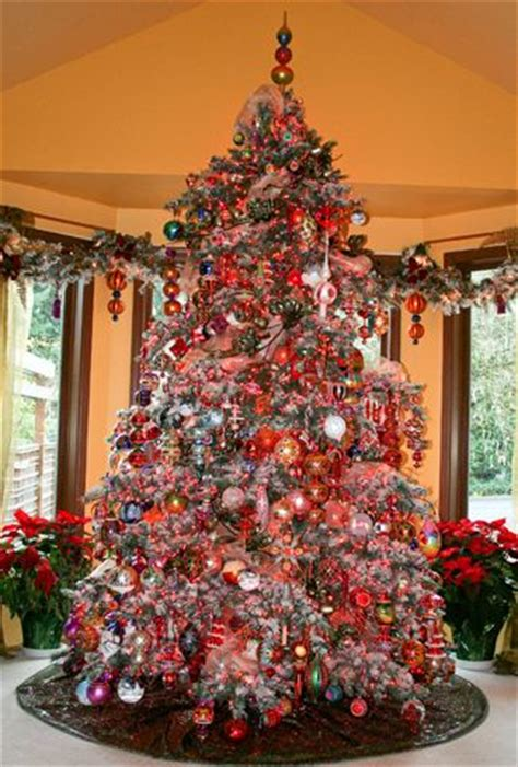 christopher the tree 1000 ideas about corner tree on