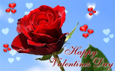 Valentines Day Roses That Speak To You by Happy Valentines Day Flowers Images Valentinesday