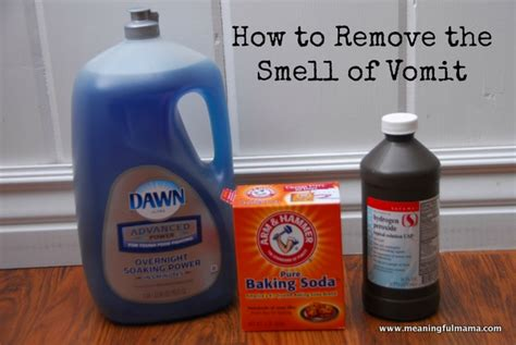 How To Clean Vomit From Car Upholstery by Clean Vomit From Carpet With Baking Soda Carpet Nrtradiant
