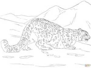 Snow Leopard Hunting Coloring Page Free Printable Snow Leopard Coloring Pages