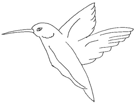 coloring page of birds flying 7 best images of printable pictures of birds flying